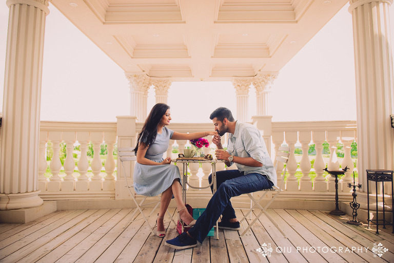 DSC 3859 11(pp w768 h512) Toronto Engagement Photography | Ruby & Gurjinder