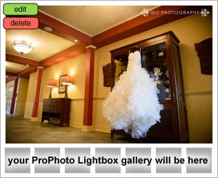 lightbox placeholder 1377046423 TORONTO WEDDING PHOTOGRAPHY CLIENT TESTIMONIAL FROM Sarrie & Andrew
