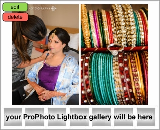 lightbox placeholder 1379727302 TORONTO SOUTH ASIAN WEDDING PHOTOGRAPHY CLIENT TESTIMONIAL FROM FATEMA & MUSTANSIR