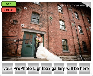 lightbox placeholder 1380149193 Toronto Wedding Photography Testimonial | Alba & Avi