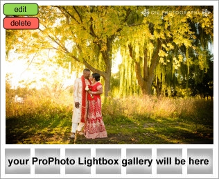 lightbox placeholder 1381636874 TORONTO SOUTH ASIAN WEDDING PHOTOGRAPHY CLIENT TESTIMONIAL FROM Ayesha & Dereck