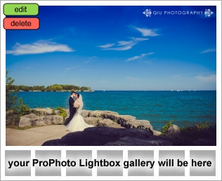 lightbox placeholder 1401740940 Client Testimonial | Toronto Wedding Photography | Yuan and Noa