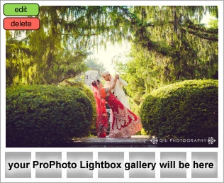 lightbox placeholder 1407280962 Wedding Photography Testimonial | Scarborough Convention Centre | Apollo Convention Centre | Dalene and Qudrat