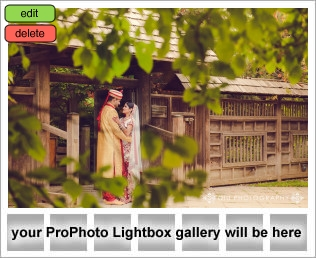 lightbox placeholder 1407906140 Wedding Photography Testimonial | Anisha and Dharmen
