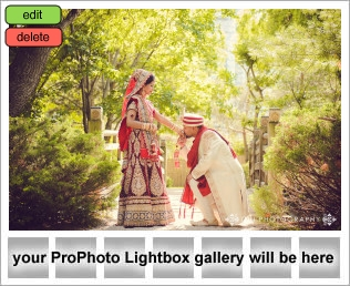 lightbox placeholder 1408934609 Wedding Photography Testimonial  | Woodbine Convention Centre | Farzana and Ashraf